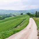 Country road in Tuscany by revealedrome
