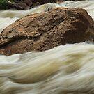 Rockin Rapids by Bo Insogna