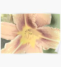 Orange Asiatic Lily Sketch1 Poster
