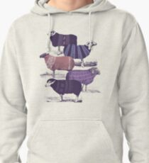 Cool Sweaters Pullover Hoodie