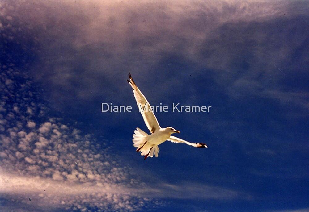 White Flight by Diane  Marie Kramer