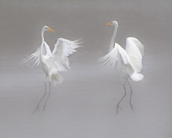 Mystic Dance by Leroy Laverman
