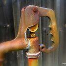 Rusty Hydrant by Debbie Robbins