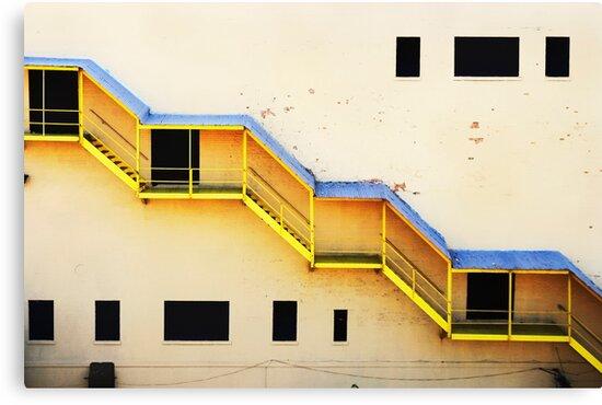 follow the yellow  by mayumi