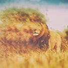 Cecil the Lion by JoeyKnuckles