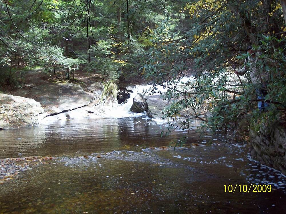 Water Scene by rockinmom5509