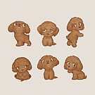 Toy-Poodle of various poses by Toru Sanogawa