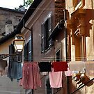 Laundry hanging on a line in Trastevere, Rome by revealedrome