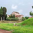 Ruins on Palatine Hill, Rome by revealedrome