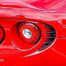 Red Lotus II by mojo1160