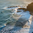 Sunset view of the Pacific Ocean waves at Nugget Point  by Sergey Orlov