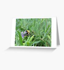 the feeding of wildlife Greeting Card