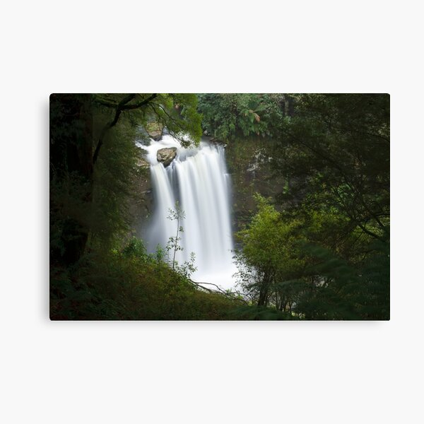 Hopetoun Falls from above Canvas Print