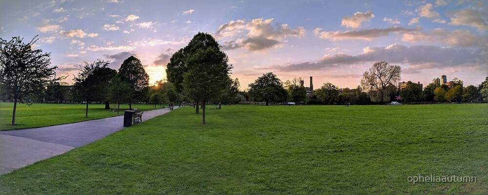 Sunset on Clissold Park by opheliaautumn