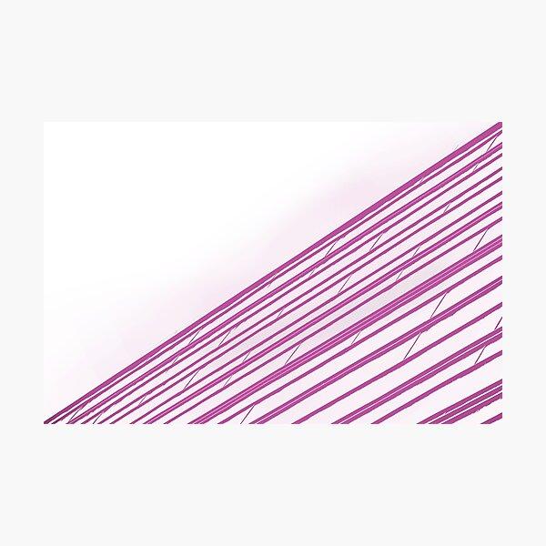 Pink Tiles Photographic Print