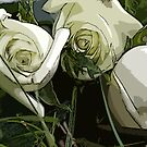 3 white roses on a grave by Ted Petrovits
