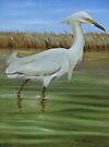 Snowy Egret in the Marsh by Phyllis Beiser