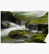 Tremont River Stones-GSMNP Poster