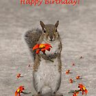 Alles Gute zum Geburtstag vom Eichhörnchen von Zina Stromberg