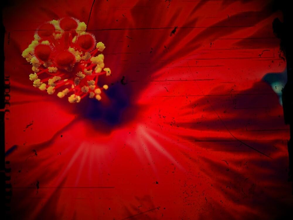 Scent by Josephine Pugh