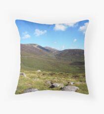 NI landscape Throw Pillow