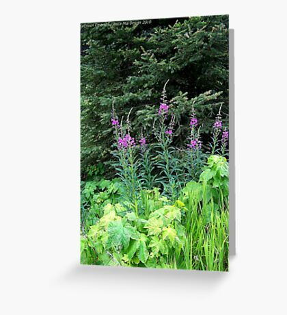 Fireweed Greeting Card