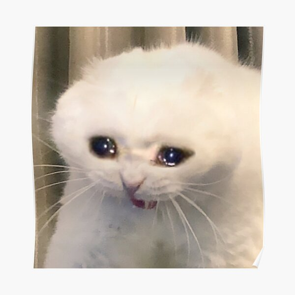 Crying Cat Posters | Redbubble