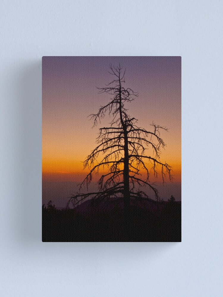 Alternate view of Fractal silhouette Canvas Print
