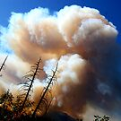 Yosmemite Wild Fire 2009 by Luuezz