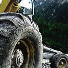 landslides are fun by Eranthos Beretta
