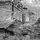 peeking house by Caprice Sobels