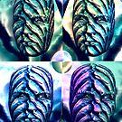The Wallflower Heads by Ann Morgan
