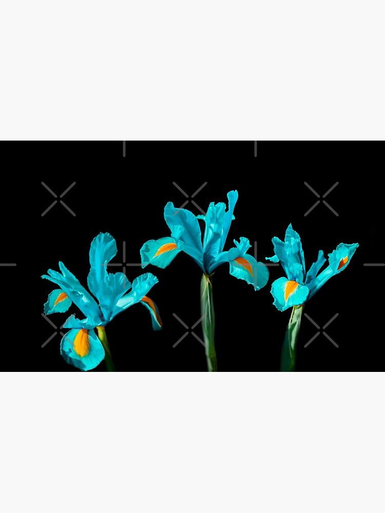Candescent Cerulean Night Flowers by maxvonfelden