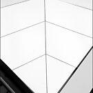 White Fin by Gavin Kerslake