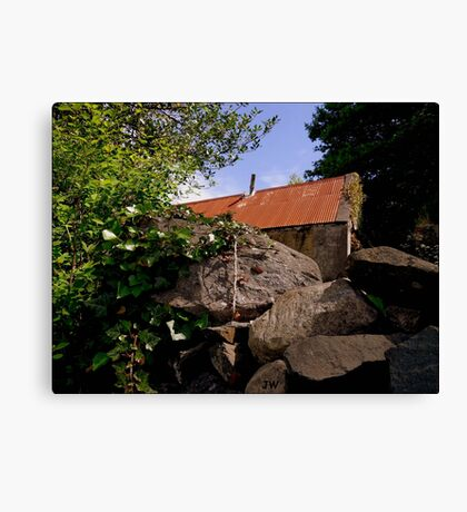 Old & Rundown Shed Canvas Print