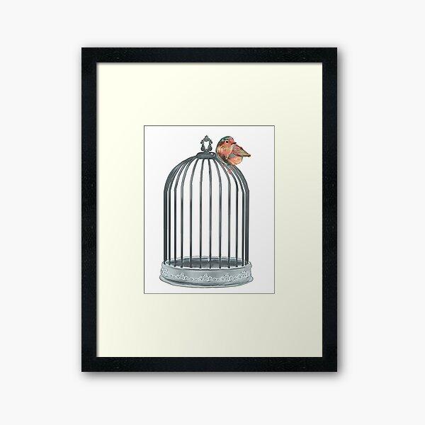 Uncaged Freedom Bird  Framed Art Print