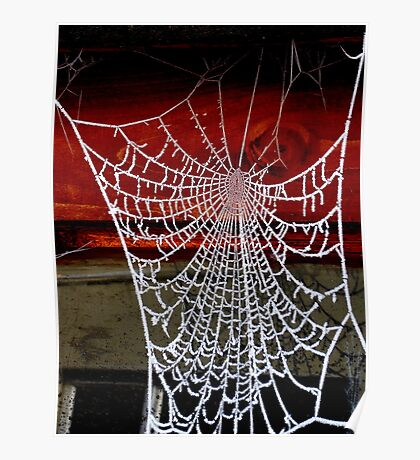 Icicles Spiderweb Poster