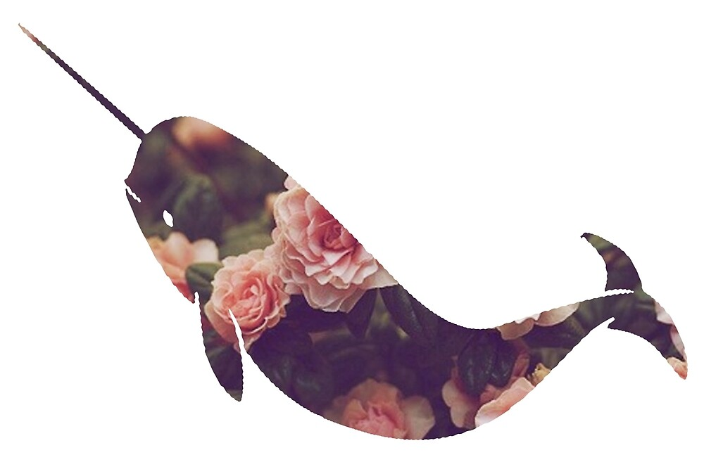 Narwhal - Floral by paperbouquet