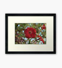 Lámina enmarcada pétalos grandes flor de petunia roja