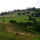A landscape of Wales by Jan Carlton