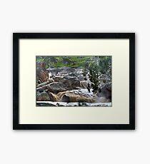 Mannum Waterfalls Framed Print
