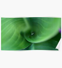 Leafy Swirl Poster