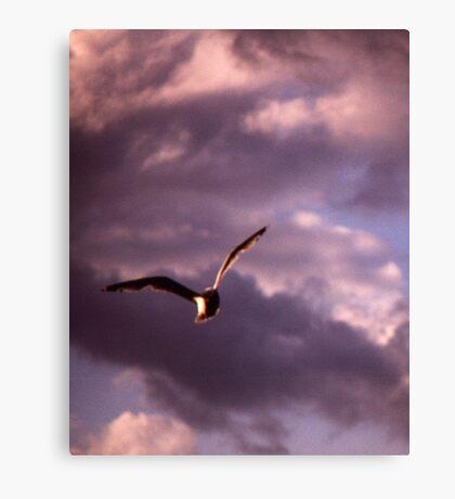 Sinister Sky Canvas Print