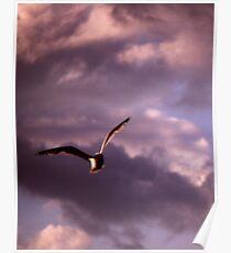 Sinister Sky Poster