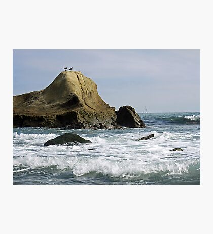 Two Gulls Gossip on a Rock Photographic Print