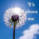 It's above me. by Kamira Gayle