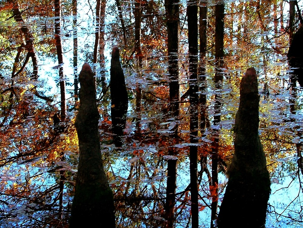 Fall in the Bog by Lori Epperson