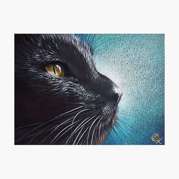 Thoughtful Cat Photographic Print
