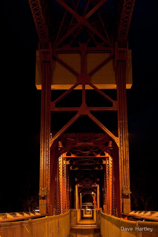 The bridge by Dave  Hartley