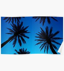 Luxor Palms Poster